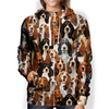 You Will Have A Bunch Of Basset Hounds - Hoodie V1