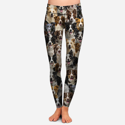 You Will Have A Bunch Of Border Collies - Leggings V1