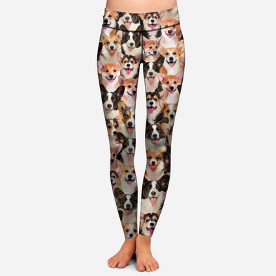 You Will Have A Bunch Of Welsh Corgies - Leggings V1