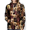 You Will Have A Bunch Of Labradors - Hoodie V1