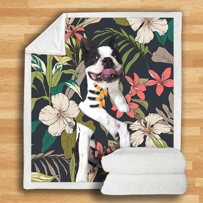 Boston Terrier Blanket V2
