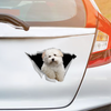 We Like Riding In Cars - Coton De Tulear Car/ Door/ Fridge/ Laptop Sticker V1