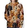 You Will Have A Bunch Of Goldendoodles - Hoodie V1