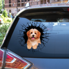 Get In - It's Time For Shopping - Havanese Car/ Door/ Fridge/ Laptop Sticker V2
