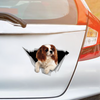 We Like Riding In Cars -  Cavalier King Charles Spaniel Car Sticker V1