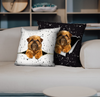 They Steal Your Couch - Griffon Bruxellois Pillow Cases V1 (Set of 2)