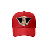 Lakeland Terrier Fan Club - Hat V2