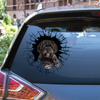 Get In - It's Time For Shopping - Shih Tzu Car/ Door/ Fridge/ Laptop Sticker V2