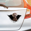We Like Riding In Cars - Weimaraner Car Sticker V1