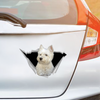 We Like Riding In Cars - West Highland White Terrier Car/ Door/ Fridge/ Laptop Sticker V1