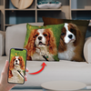 They Steal Your Coach - Personalized Pillow Cases (Set of 2) With Your Pet's Photos