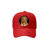 Nova Scotia Duck Tolling Retriever Fan Club - Hat V2