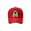 Tibetan Spaniel Fan Club - Hat V2