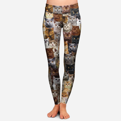 You Will Have A Bunch Of British Shorthair Cats - Leggings V1