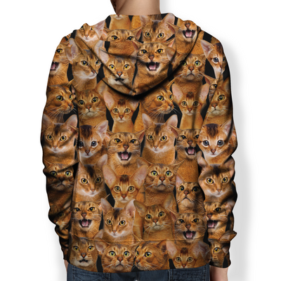You Will Have A Bunch Of Abyssinian Cats - Hoodie V1