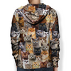 You Will Have A Bunch Of British Shorthair Cats - Hoodie V1