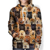 You Will Have A Bunch Of Chow Chows - Hoodie V1