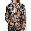You Will Have A Bunch Of English Setters - Hoodie V1