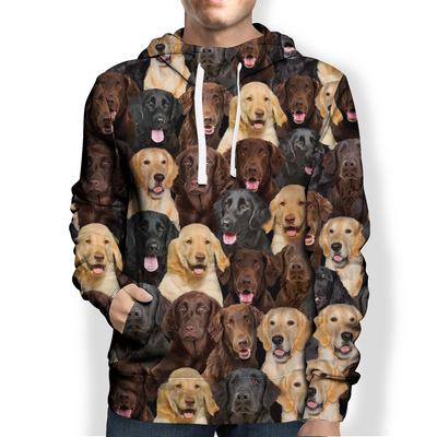 You Will Have A Bunch Of Flat Coated Retrievers - Hoodie V1
