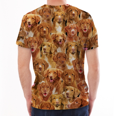 You Will Have A Bunch Of Nova Scotia Duck Tolling Retrievers - Tshirt V1