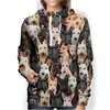 You Will Have A Bunch Of Scottish Terriers - Hoodie V1