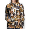 You Will Have A Bunch Of Shetland Sheepdogs - Hoodie V1