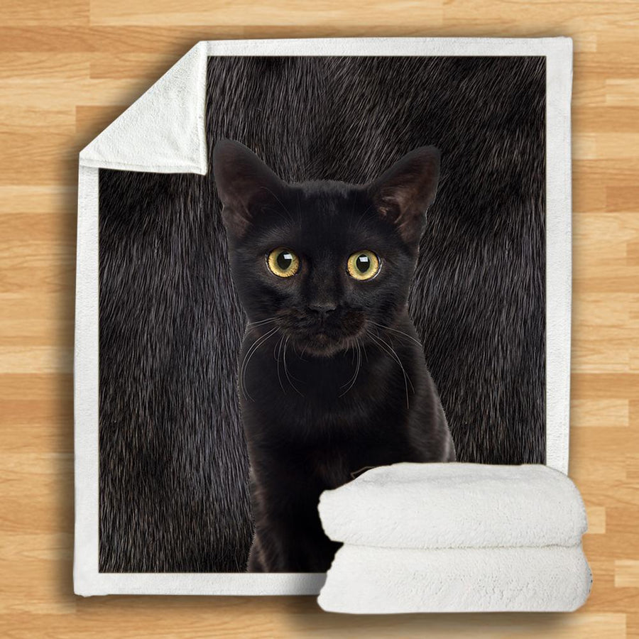 Bombay Cat Blanket