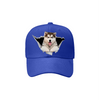 Alaskan Malamute Fan Club - Hat V3