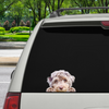 Can You See Me Now - Aussiedoodle auto / deur / koelkast / laptop sticker V1