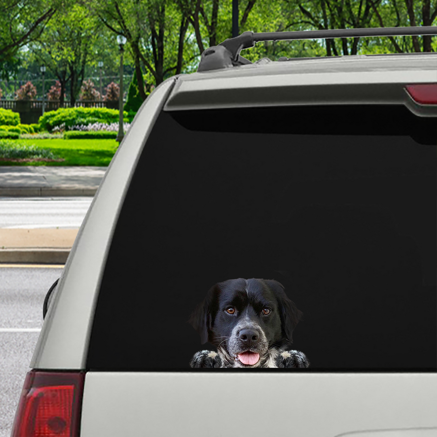Can You See Me Now - Brittany Spaniel auto / deur / koelkast / laptop sticker V2