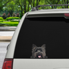Can You See Me Now - Cairn Terrier Car / Door / Fridge / Laptop Sticker V2