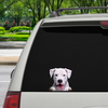 Can You See Me Now - Dogo Argentino auto / deur / koelkast / laptop sticker V1