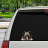Can You See Me Now - Keeshond Car/ Door/ Fridge/ Laptop Sticker V1