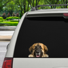 Can You See Me Now - Leonberger Car/ Door/ Fridge/ Laptop Sticker V1