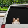 Can You See Me Now - Norwegian Forest Cat Car/ Door/ Fridge/ Laptop Sticker V2