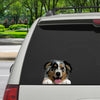Can You See Me Now - Australian Shepherd Car/ Door/ Fridge/ Laptop Sticker V1