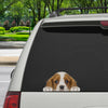 Can You See Me Now - Cavalier King Charles Spaniel Car/ Door/ Fridge/ Laptop Sticker V3