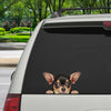 Can You See Me Now - Chihuahua Car/ Door/ Fridge/ Laptop Sticker V2