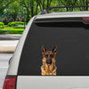 Can You See Me Now - German Shepherd Car/ Door/ Fridge/ Laptop Sticker V2