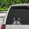 Can You See Me Now - Husky Car/ Door/ Fridge/ Laptop Sticker V1