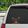 Can You See Me Now - Miniature Pinscher Car/ Door/ Fridge/ Laptop Sticker V1