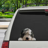 Can You See Me Now - Old English Sheepdog Car/ Door/ Fridge/ Laptop Sticker V1