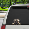 Can You See Me Now - Pug Car/ Door/ Fridge/ Laptop Sticker V1