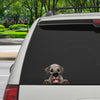 Can You See Me Now - Schnauzer Car/ Door/ Fridge/ Laptop Sticker V1