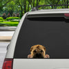 Can You See Me Now - Shar Pei Car/ Door/ Fridge/ Laptop Sticker V1