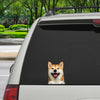 Can You See Me Now - Shiba Inu Car/ Door/ Fridge/ Laptop Sticker V1