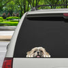 Can You See Me Now - Shih Tzu Car/ Door/ Fridge/ Laptop Sticker V1
