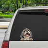 Can You See Me Now - Shih Tzu Car/ Door/ Fridge/ Laptop Sticker V2