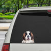 Can You See Me Now - St. Bernard Car/ Door/ Fridge/ Laptop Sticker V1
