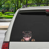 Can You See Me Now - Staffordshire Bull Terrier Car/ Door/ Fridge/ Laptop Sticker V1
